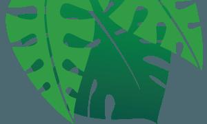 left leaves | PATTH